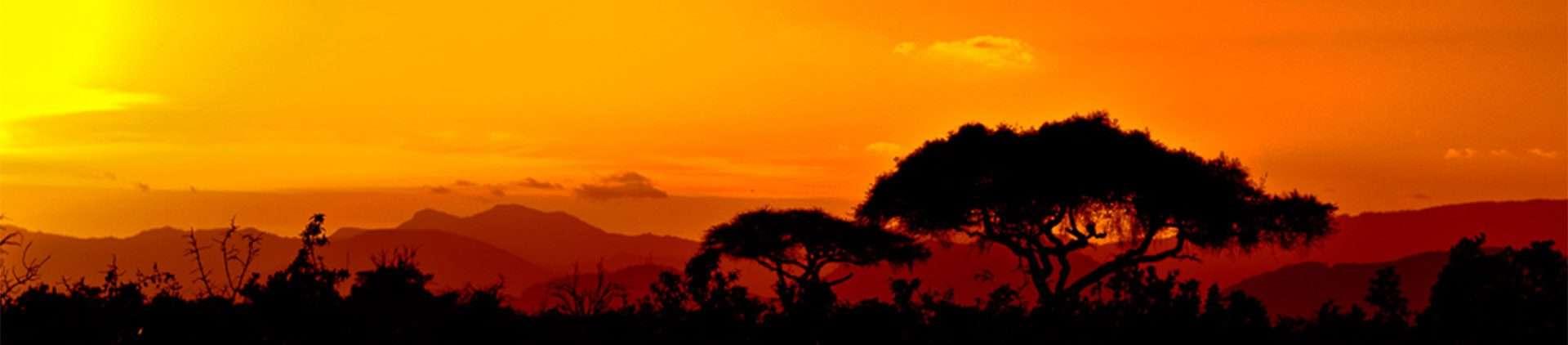 KARIBU IN SENEGAL – Diario di viaggio