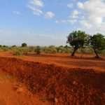 Diario di viaggio - Kenya e Uganda 2017
